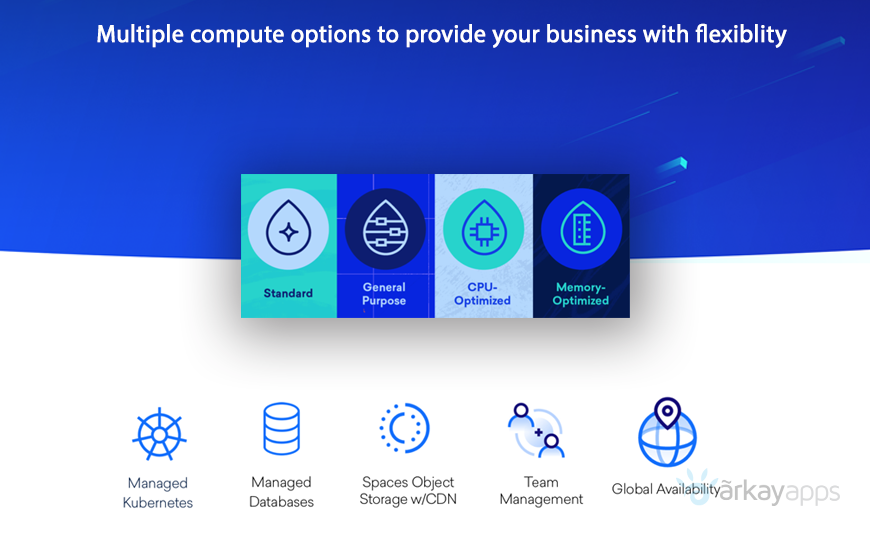 why choose digital ocean cloud India