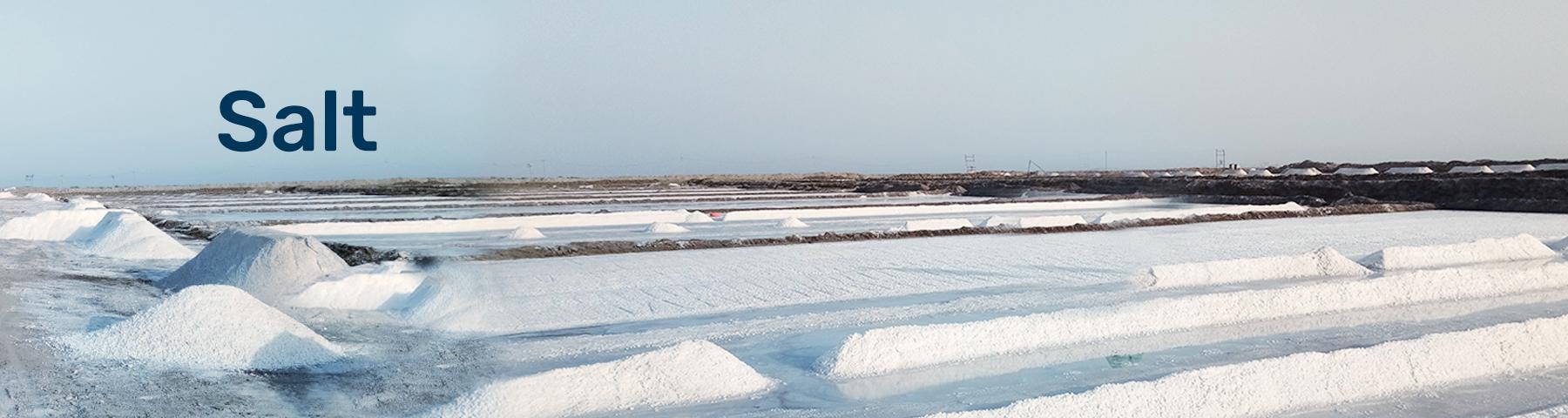 SKC-Salt-banner