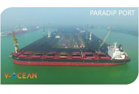 Vessel Line-Up, V-OCEAN